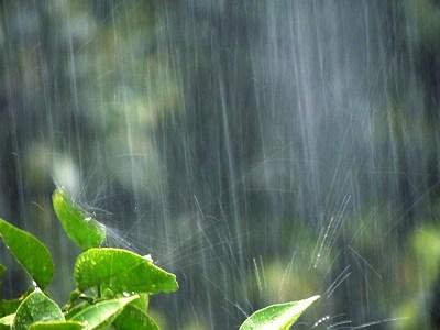 梅雨 布団