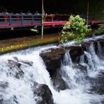 京都の川床を貴船で!ランチ中心にお手軽でおすすめな5000円前後の店