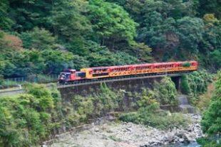京都の夏は涼しい場所で観光したい!涼と古都の一挙両得な楽しみ方
