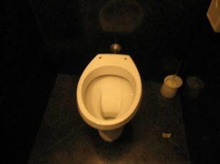イタリアのトイレは2つ?便座が無いところや流し方はどうするの?