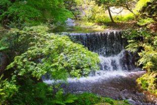 京都の夏は涼しい場所で観光したい!デートにもおすすめ避暑地スポット