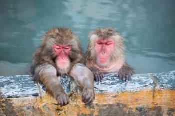 冷え性に効くお風呂の入り方!時間はどれくらい?足湯も効果あり?