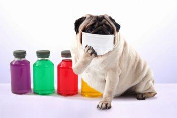 風邪による喉の痛みの治し方どんな食べ物や飲み物が良い?即効で治したいときは?