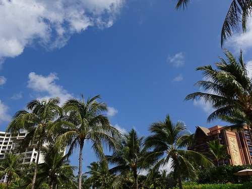ハワイへ子連れ旅行