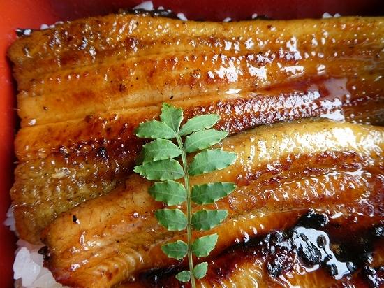うなぎの温め方フライパン1本でふっくら香ばしいお店の味にする方法!